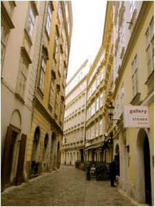 A pristine and quaint alleyway of Vienna where many Hollywood films have been filmed because it is so untouched by modernity.