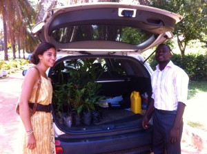 Jamie and Oppong from CDDF with a packed car of plants!