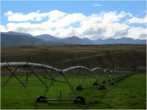 The world's longest sprinkler!