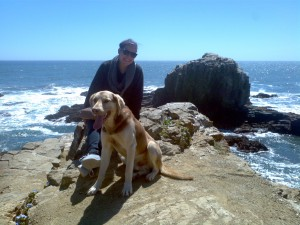 me with a stray dog at punta de lobos