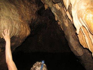 1. Exploring The Caves