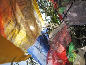 Tibetan prayer flags strung from tree to tree near the caves. The idea of them is to send the prayers written on them out to the world as the wind and rain wear them away.