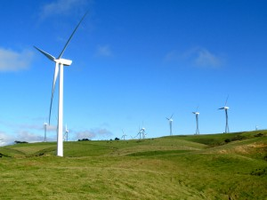 Te Āpiti Wind Farm. These windmills can be seen from miles away.