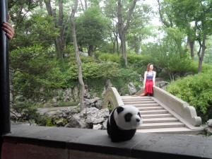 Bao Bao At Humble Admin's Garden