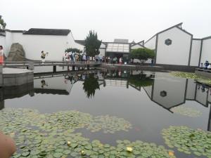 SuZhou Museum Koi Pond