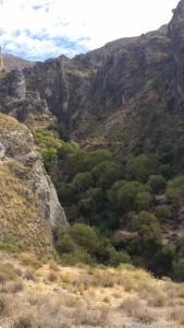 MountainPicture2