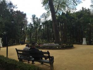 The park and Plaza de España were definitely my favorite parts of Sevilla.